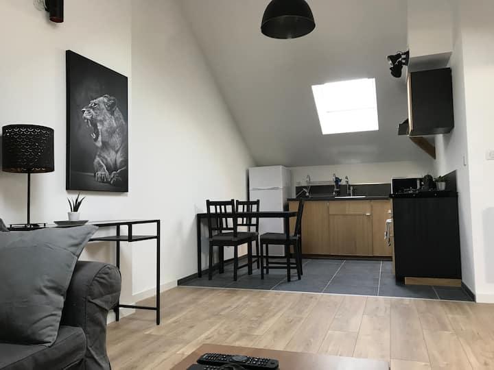 Comble loft Le toit de Dembour
