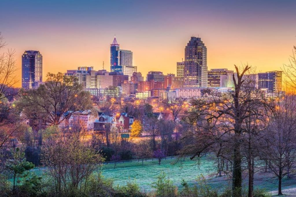 Artist's rendering of the Downtown Raleigh skyline from Dorothea Dix Park which is only a couple miles from the airbnb. Great place to walk!