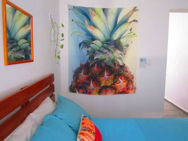 Casa Piña - Playa del Carmen - Apartment