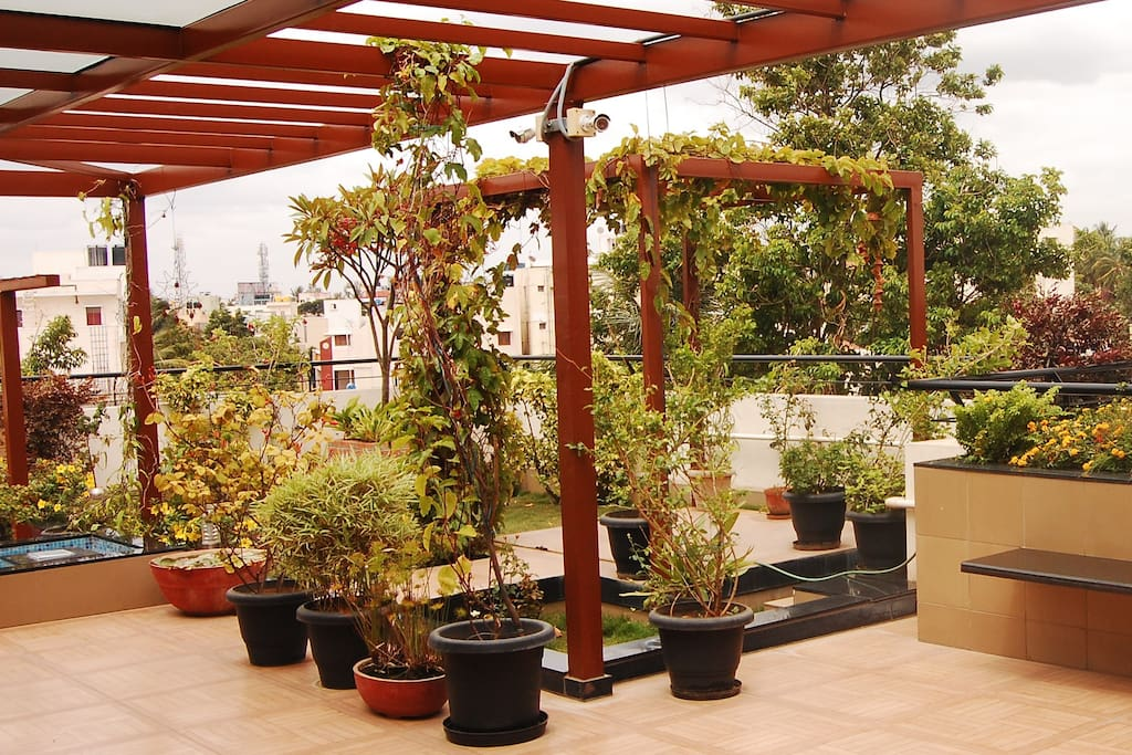 Terrace garden view studio for family guest suites for for Terrace 6 indore