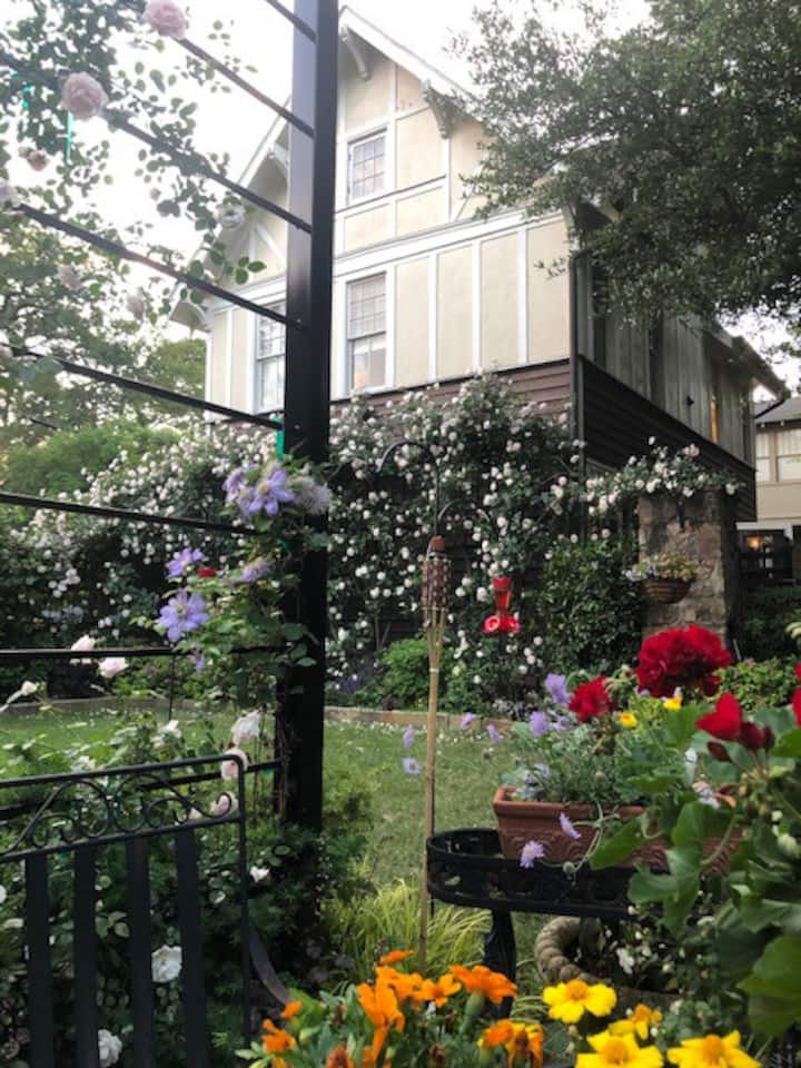 Historic Hillcrest lux Executive Apartment  2/1