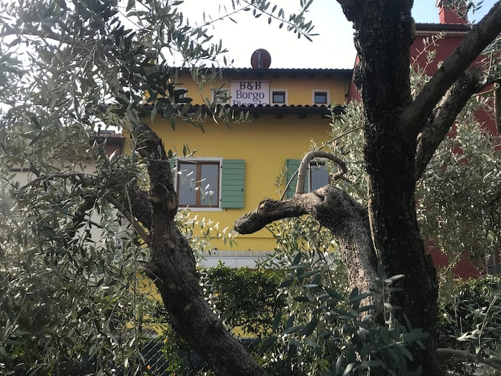 Bed And Breakfast in posizione tranquilla