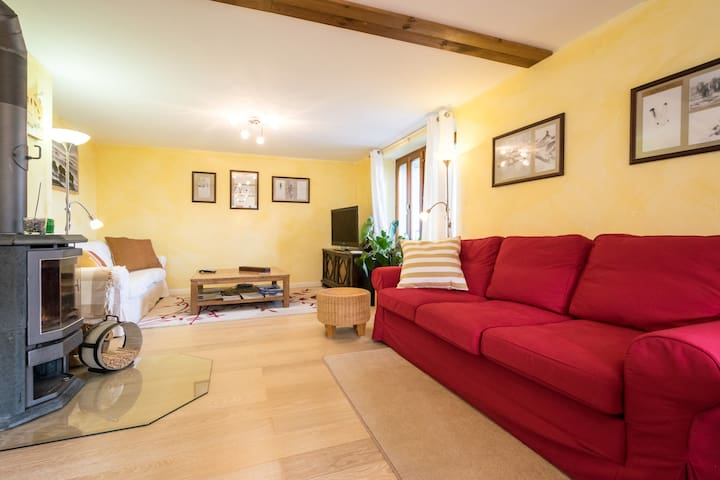 Mountain resort, spacious, light-filled 5-bed apt. - Torgon - Apartament