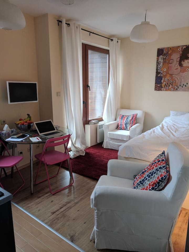Sunny and warm studio apartment in Bansko