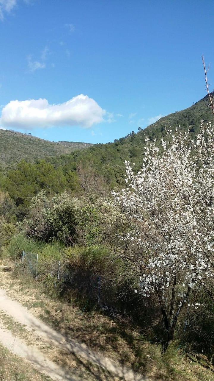 Escale au coeur de la Provence