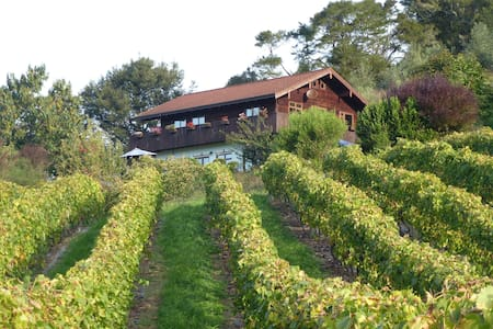 Swiss Chalet over hilly vineyard and river - Ngatimoti - 牧人小屋