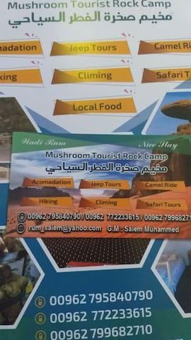 Wadi rum mushroom camp