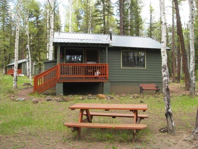 Aspen Cabin #3