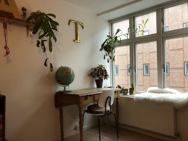 Nice room in the heart of Nørrebro