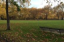 The local park, 2 mins walk