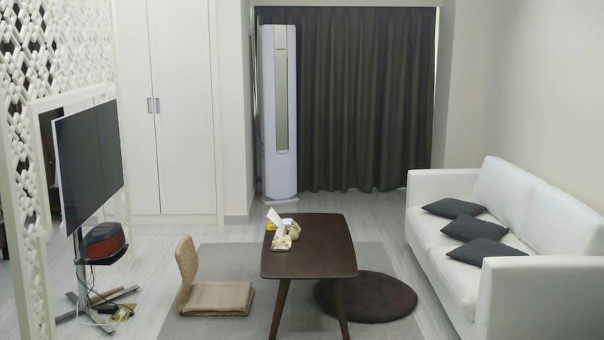 海口完美越冬度假房,单身贵族品质公寓,新房新物家具电器齐配。