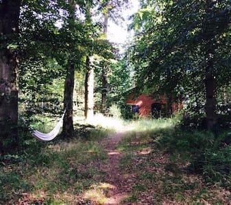 Adorable petite maison ds les bois