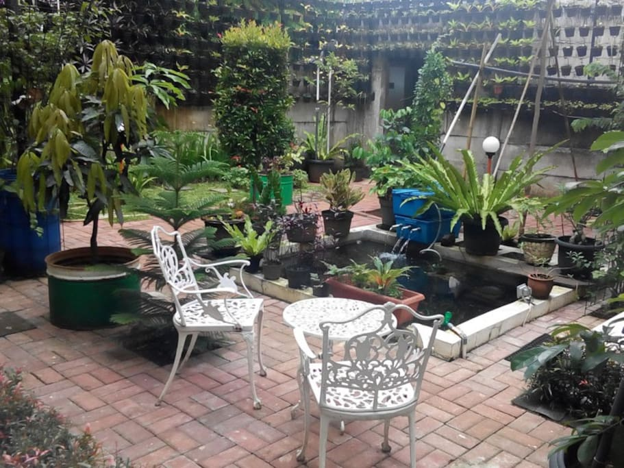 Bogor Homestay yard.