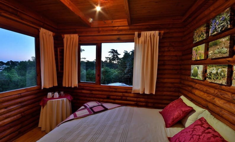Private room in log cabin!