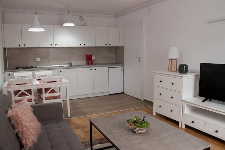 Ana Cristina Apartament Sighișoara