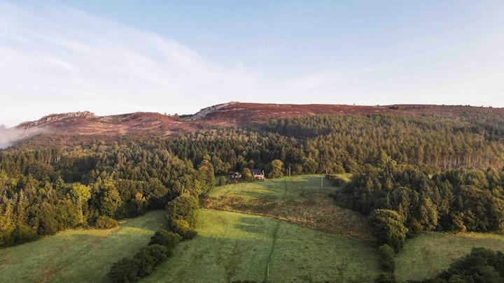 Open-plan, stunning views, masses of wildlife