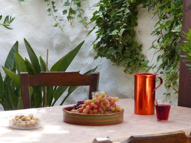 Steinhaus in kleinem Dorf - Agia Fotia/ Pirgos
