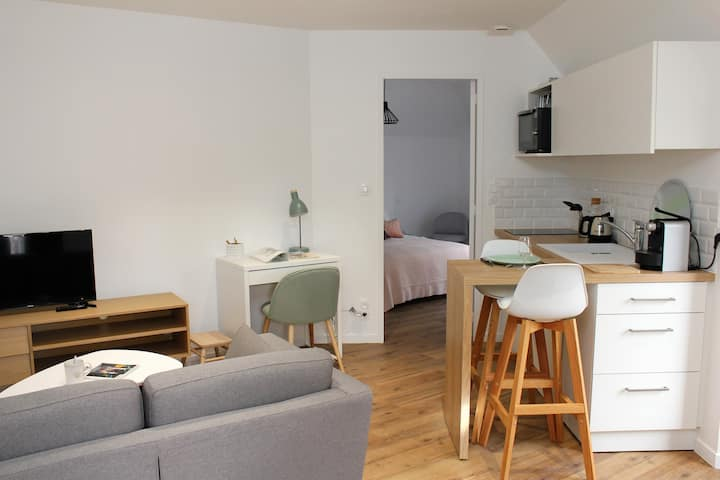 Laval gare - centre ville : appartement cosy
