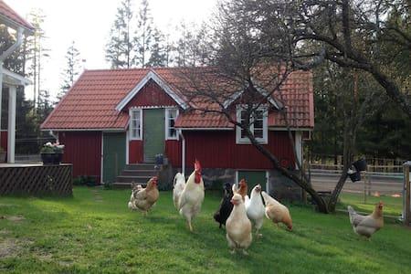 Idyllic cottage (stuga) in Småland - Lessebo S - Blockhütte