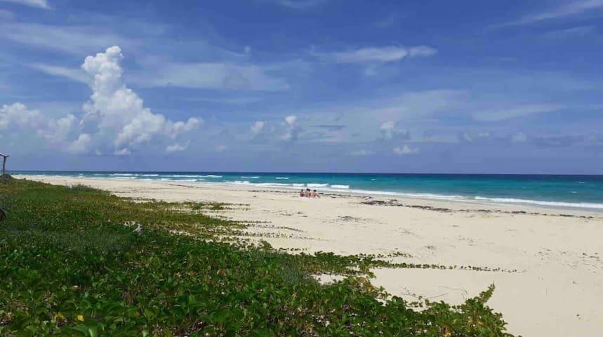 Regina's Casa Playa in Guanabo