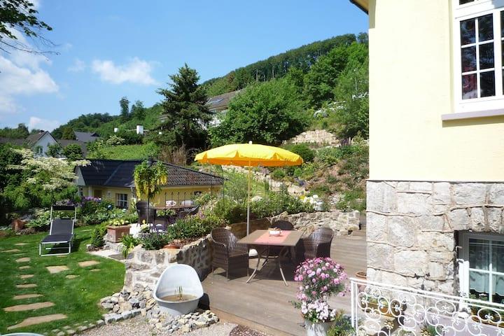 Quaint Apartment in Bad Pyrmont with Balcony & Garden