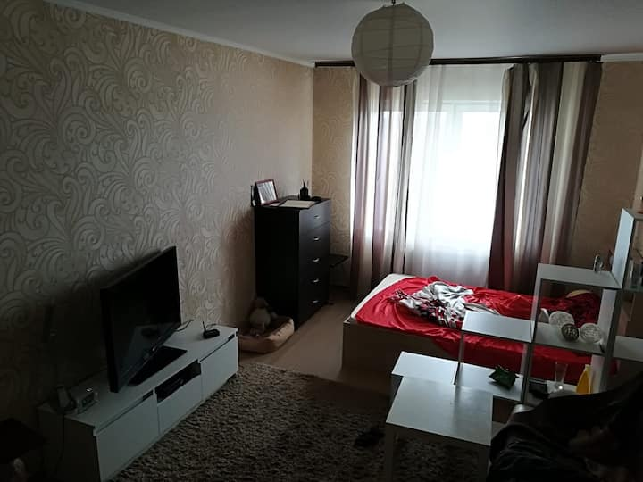 Apartment for FIFA WORLD CUP. 7 km from Moscow