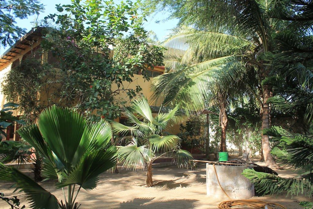 Grande maison avec jardin bango st louis s n gal for Le jardin dakar