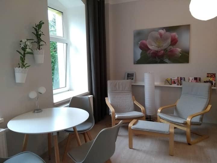 Apple Dream - living in Dresden-Neustadt