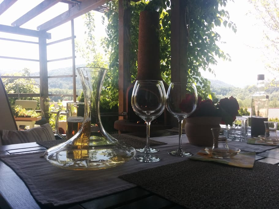Barbeque Area - where you can enjoy in homemade wine and food
