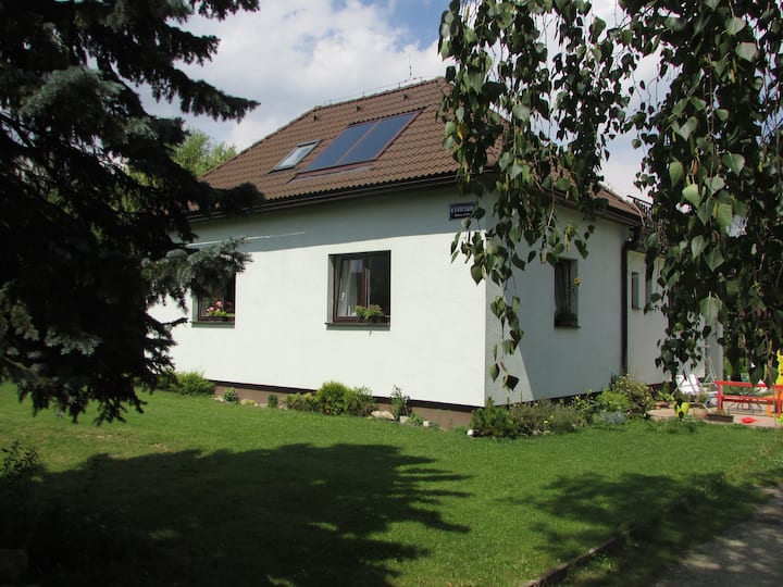 Large sunny apartment near mountain