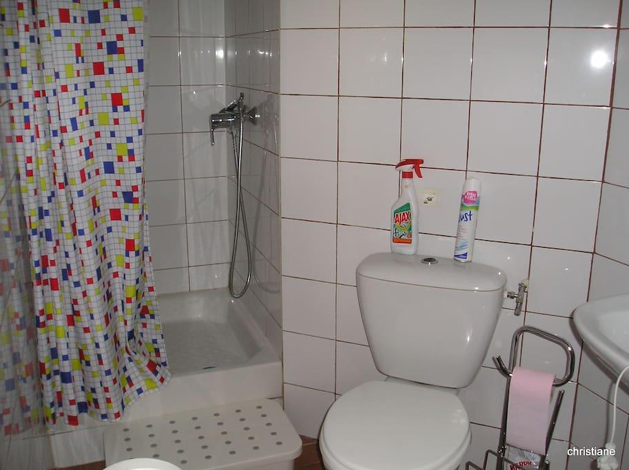 douche lavabo et wc