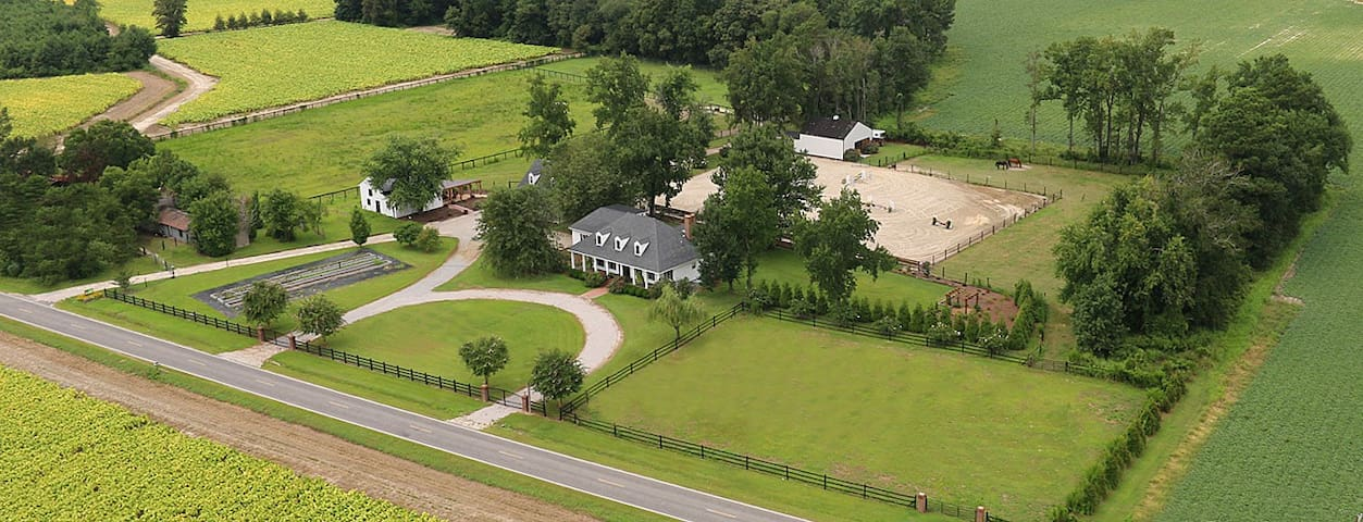 Entire Farm House on 11 acres (I95 & 264)