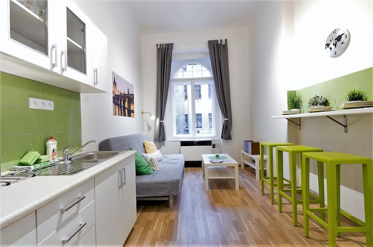 COSY APARTMENT U KOTVY in the heart of Prague - Prague - House