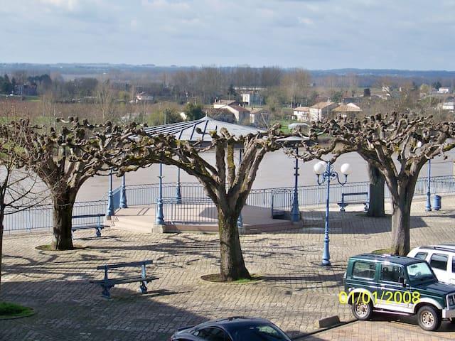 Gîte coté Garonne à Tonneins - Tonneins - Pis