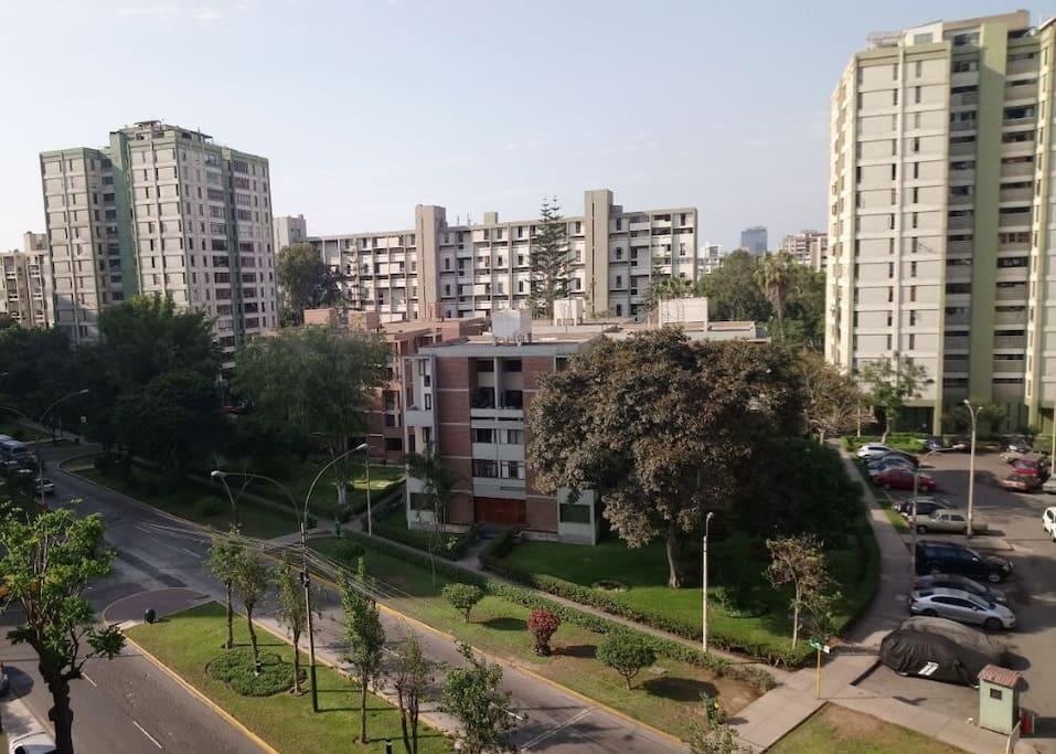Vista panorámica diurna frente a parque con mucha área verde para deporte.