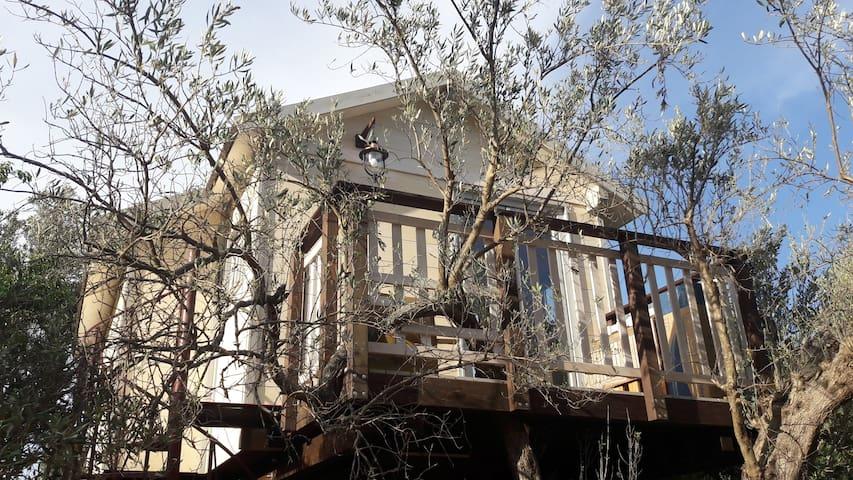PALAZZO CONFORTI TREEHOUSE RESORT shabby