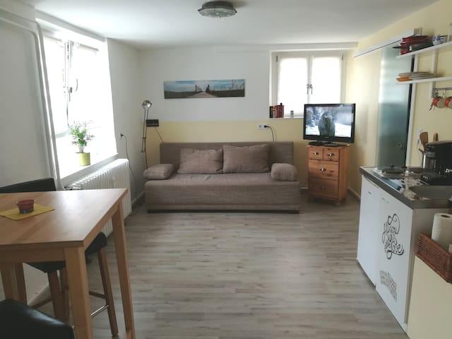 Helles 1-Zimmer Appartement mit eigenem Eingang