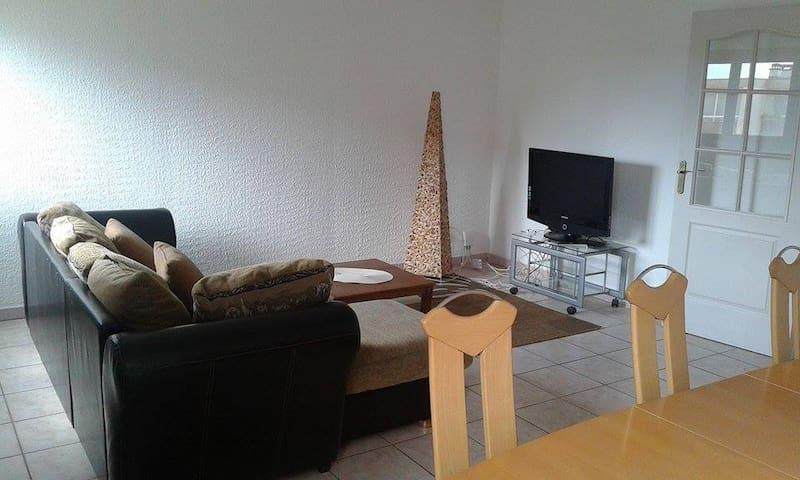 Agréable et confortable Appartement F5 Lingolsheim - Lingolsheim - Apartment