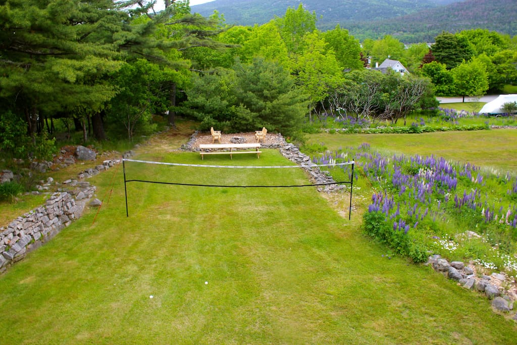 Spacious back yard with Volleyball/Badminton net