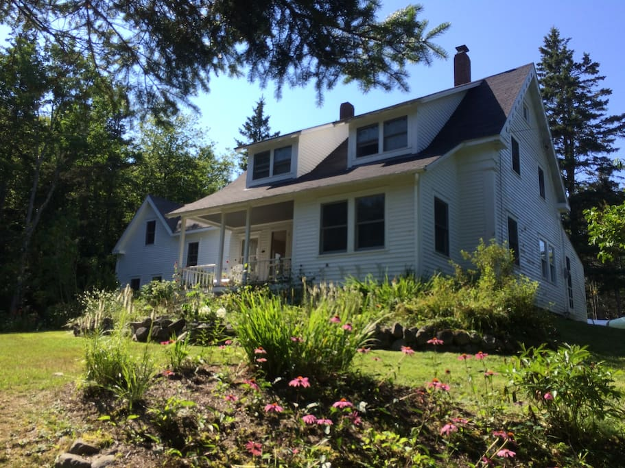 Our House and Flower Beds