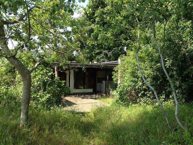 Maison au milieu des dunes, parking, petit garage. - Koksijde - House