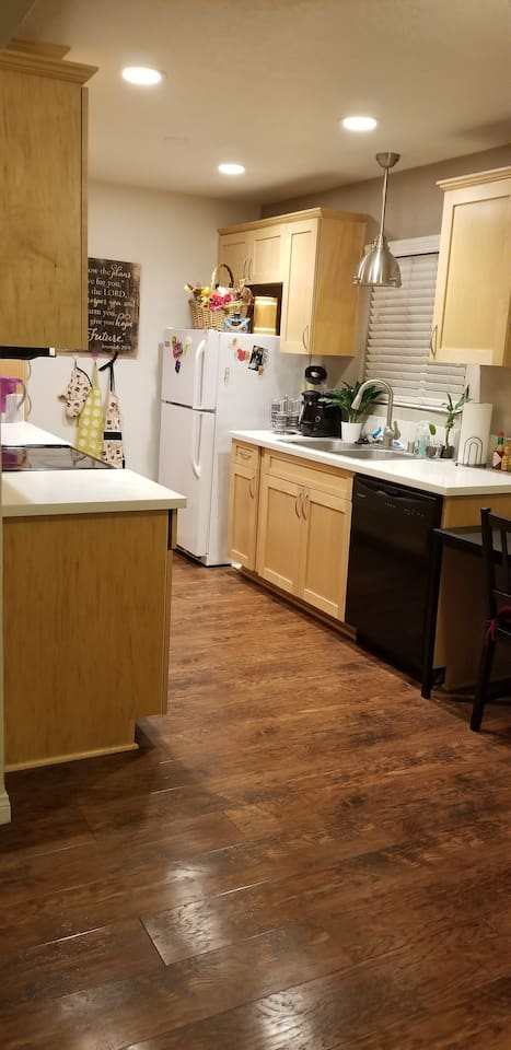 fridge, diswasher, microwave, and electric stove