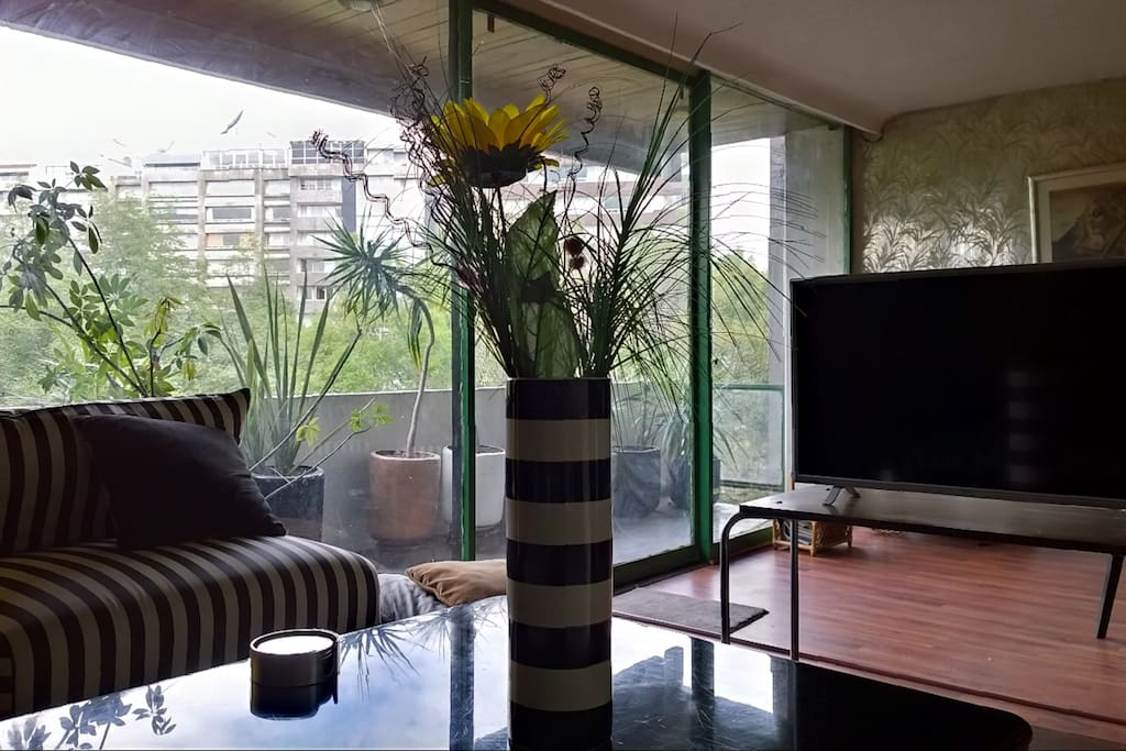 "32"" Smart TV and balcony, beautiful view to Acacias Park."