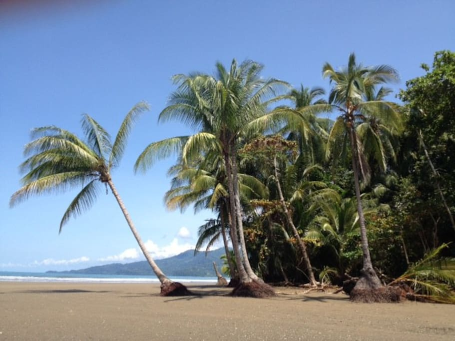 Day time in Uvita beach