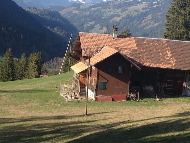 Gemütliches Zimmer  - Zweisimmen - House