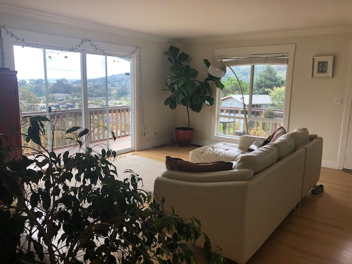 Sausalito Home with Amazing View / Sanctuary