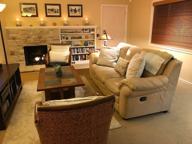 Living room with TV and gas fireplace