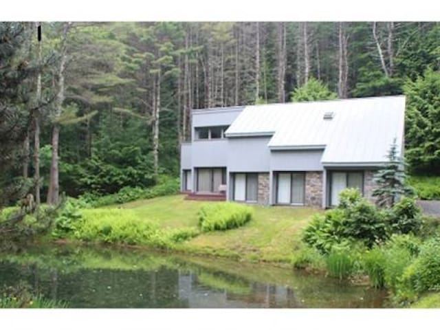 Lovely Retreat Close to Slopes - ฮาร์ทฟอร์ด - บ้าน