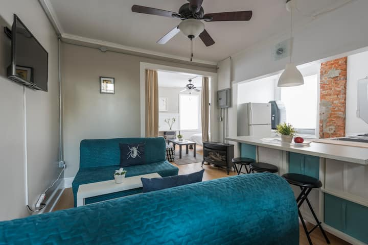 Penthouse @PalmerPark Roofdeck: Old Fishtown 1700s