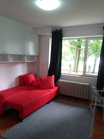 Central & affordable, on Central Park alley - Cluj-Napoca - Flat